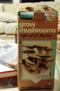 Mushroom_Kit_Box